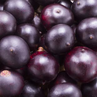 Product Page Key Ingredients: Acai