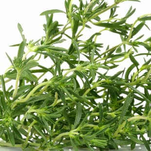 Product Page Key Ingredients: Rosemary