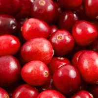 Product Page Key Ingredients: Cranberry
