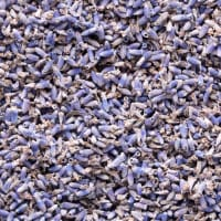 Product Page Key Ingredients: Lavender