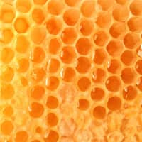 Product Page Key Ingredients: Royal Jelly