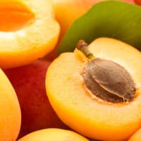 Product Page Key Ingredients: Apricot