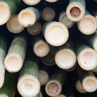 Product Page Key Ingredients: Bamboo Silica