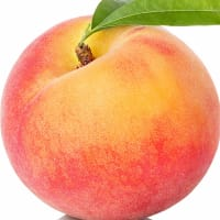 Product Page Key Ingredients: Peach Pigment