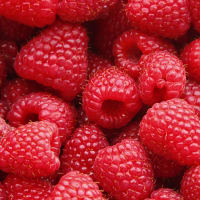 Product Page Key Ingredients: Raspberry