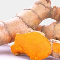 Product Page Key Ingredients: Turmeric Extract