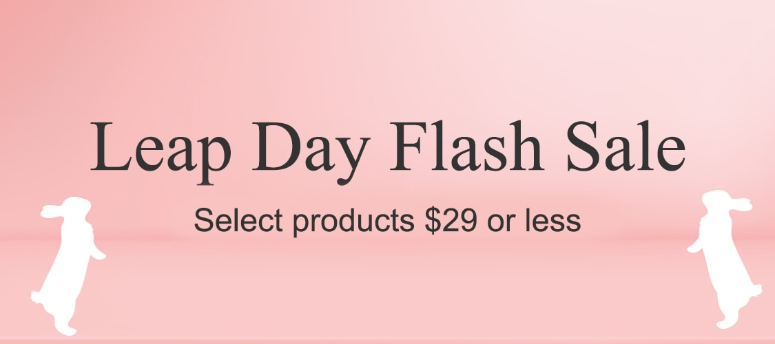 Leap Day image